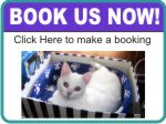 Pet Sitters Book Now